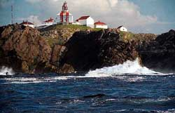The Bonavista Light House